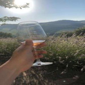 Week-end a Borgo Condè: vino, lavanda e tanto relax.