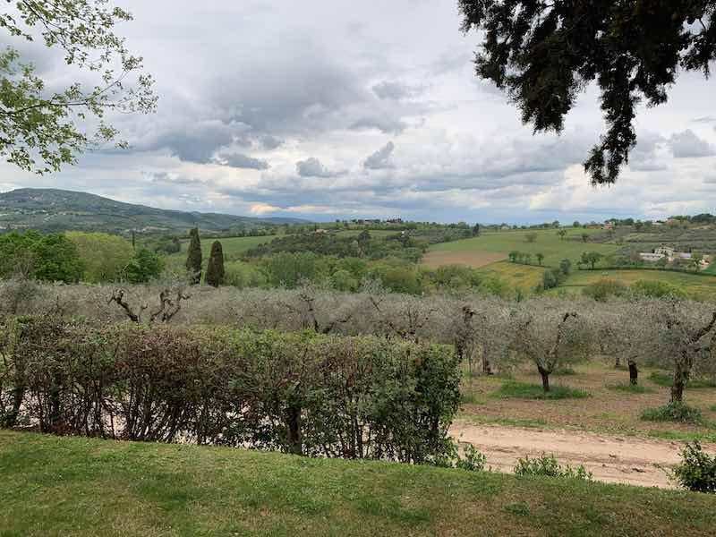 montefalco_visitaincantina_antonelli