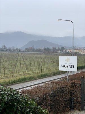 mosnel_collinetta_vigneti