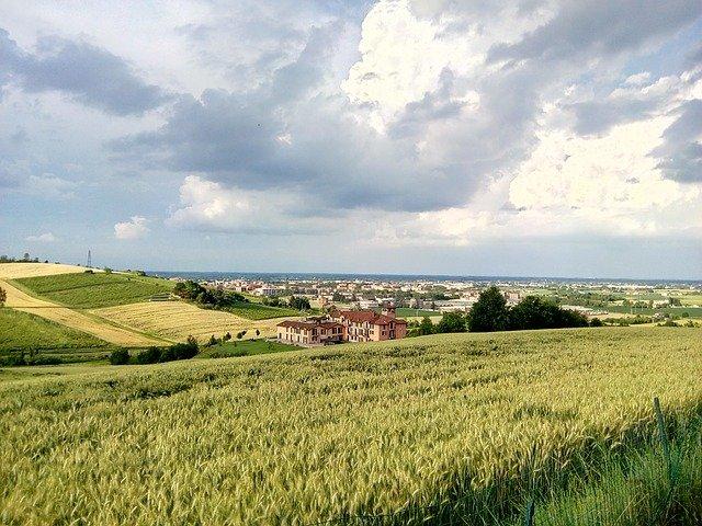 colline_monferrato