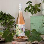 Chiaretto Valtènesi   Sincette   Amanti di vino