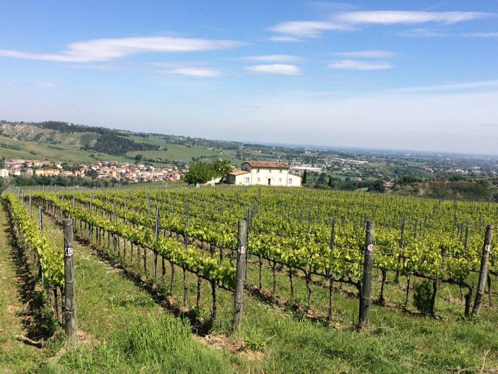 borgo-conde-vigna-1024x768