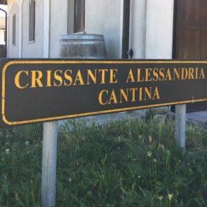 Crissante Alessandria: la famiglia del Barolo